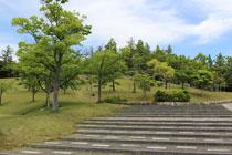 三好丘公園